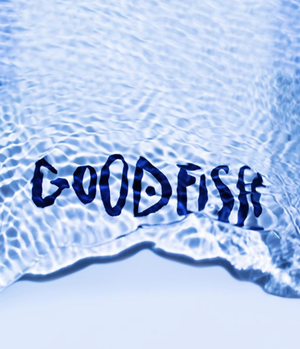 harmless-harvest-co-founders-launch-seafood-snack-brand-goodfish